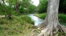 Medina River-San Antonio