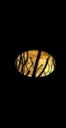 Jack 'o Lantern moonrise in april